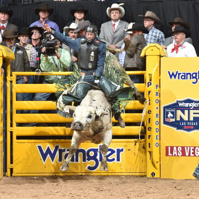 Barnes PRCA Rodeo bull 503 Pure Gangster and Jordan Hansen, WNFR 2019 Round 4